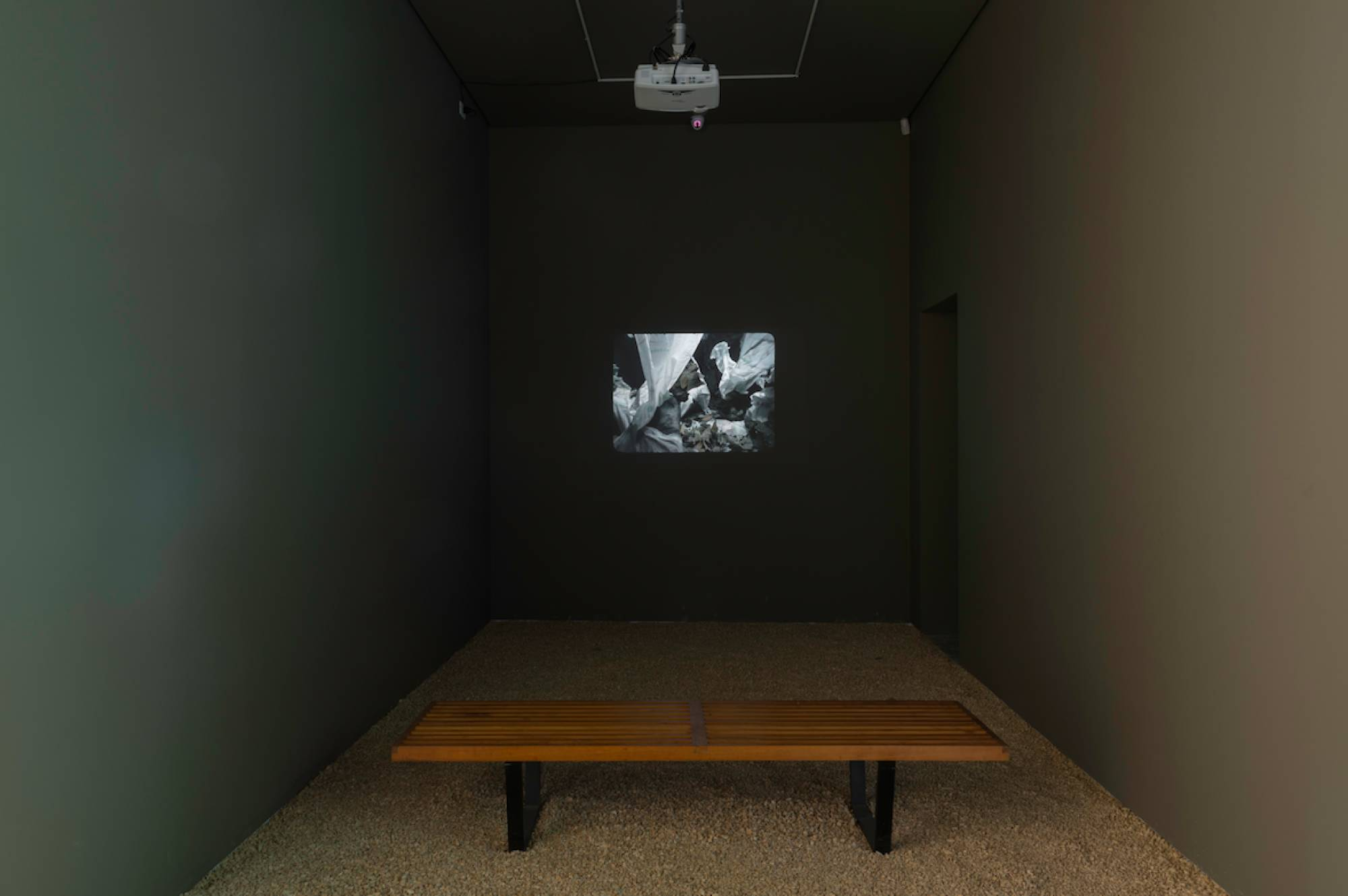 Daniel Steegmann Mangrané,<em>Phasmides</em>, Mendes Wood DM São Paulo, 2013 - Mendes Wood DM