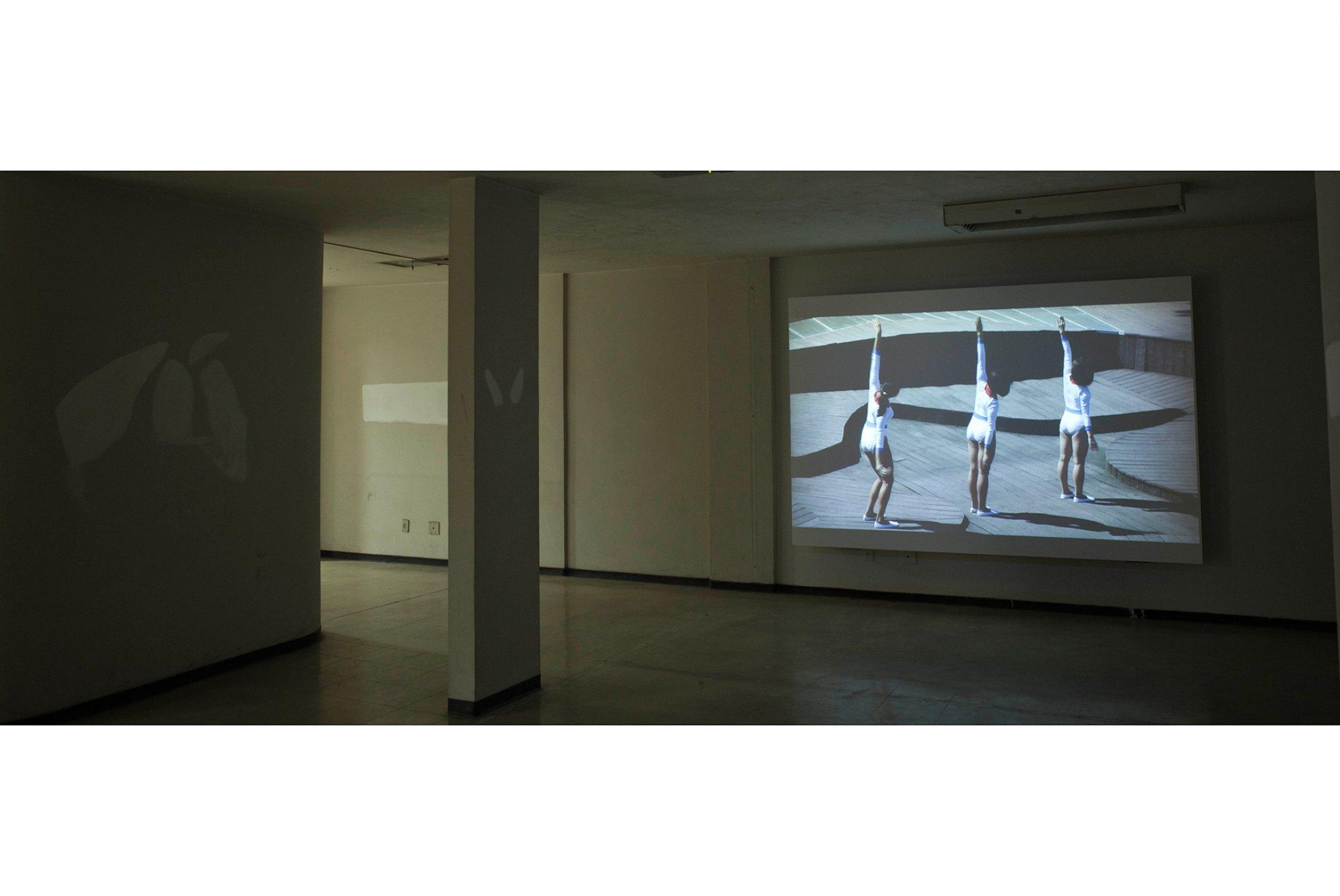 Luiz Roque,<em>The Triumph</em>,2011, Pivô, São Paulo<br>(Photo:Joana Luz) - Mendes Wood DM