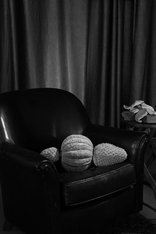 Luiz Roque &Erika Verzutti,<em>Freud</em>,2016,C-print,55 × 36,5 cm - Mendes Wood DM