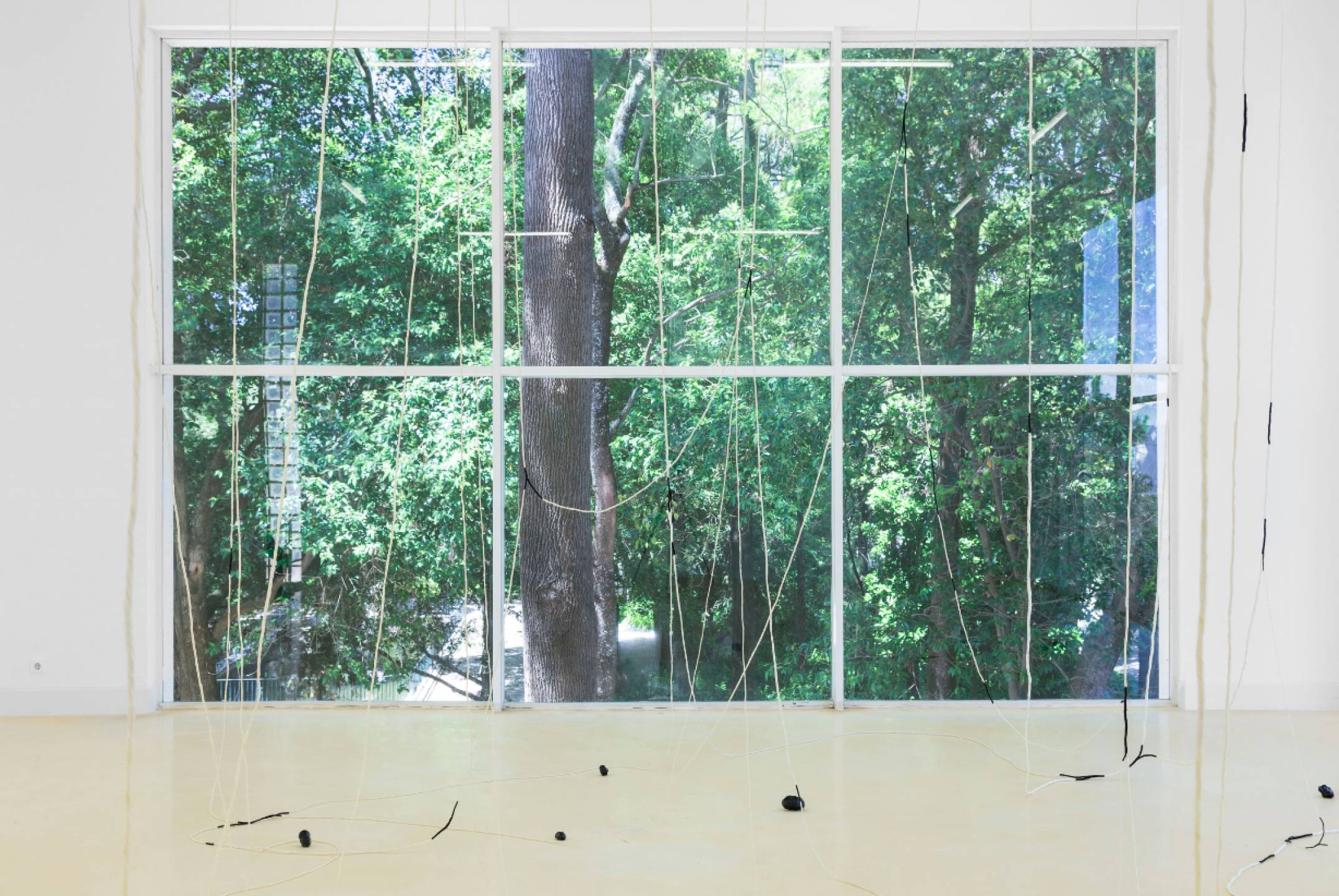 Paloma Bosquê,&nbsp;<em>The Hollow and The Seam,</em> Pavilhão Branco – Museu da Cidade, Lisbon, 2017 - Mendes Wood DM