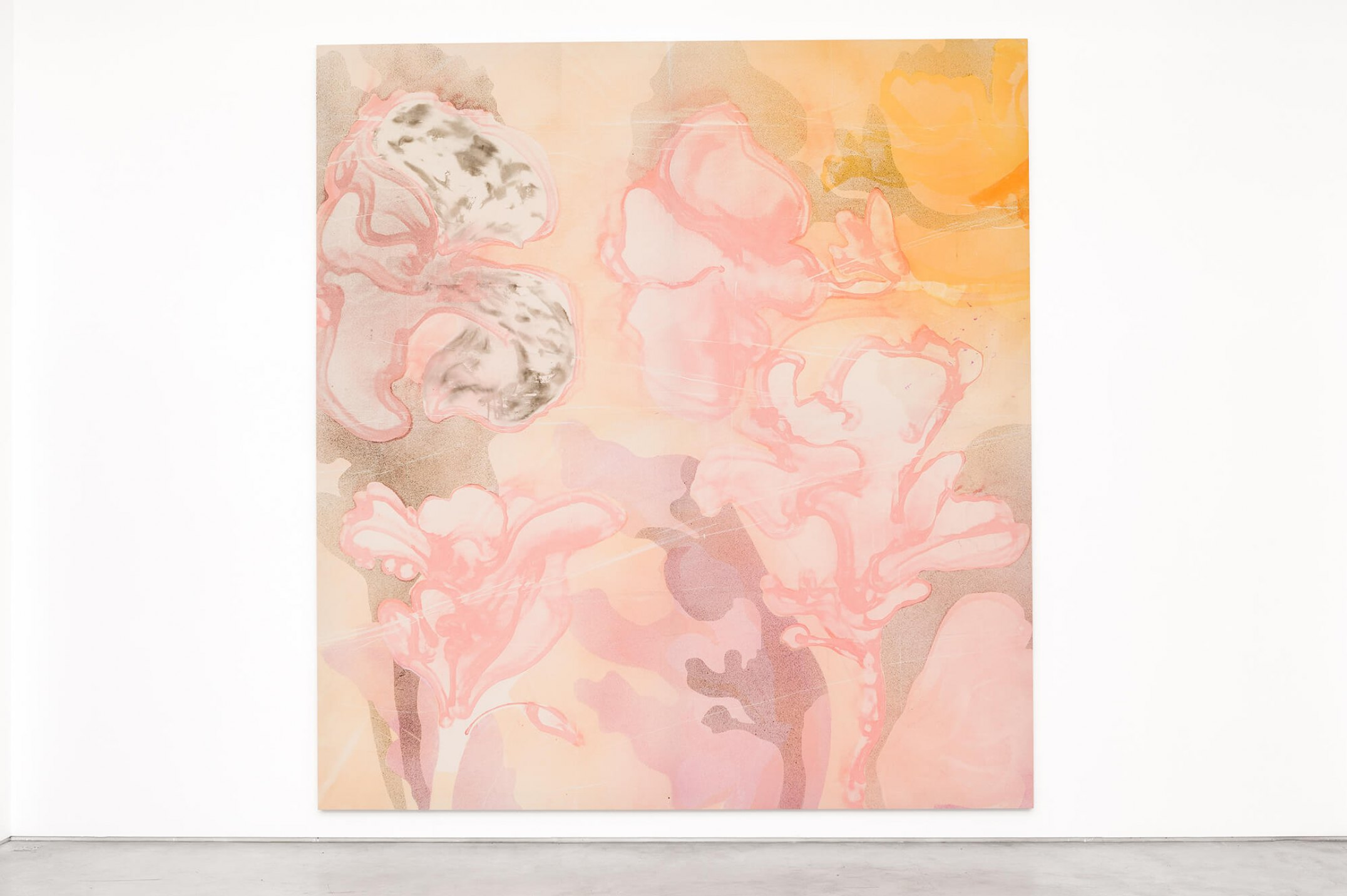 Matthew Lutz-Kinoy, <em>Pink opening, 2016, </em>acrylic and charcoal on canvas, 420 × 390 × 4,5 cm - Mendes Wood DM