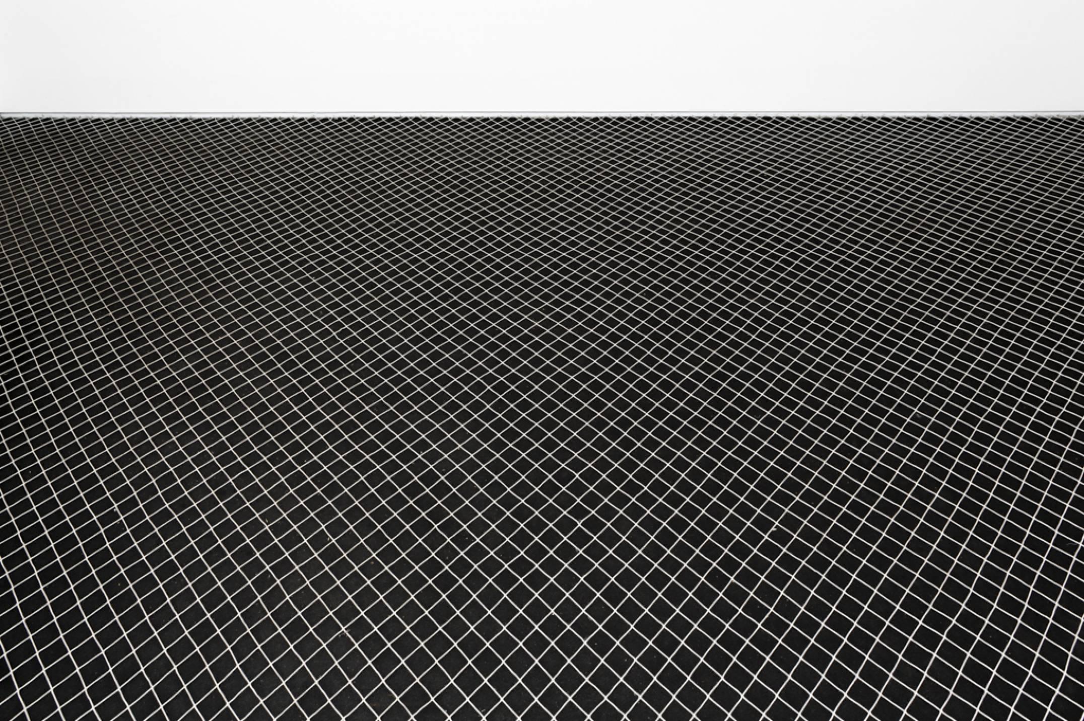 Roberto Winter, <em>Plano de obstrução vertical (em direção a mito de Sísifo Foxconn)</em>, 2013, nylon net installed on black floor, variable dimensions - Mendes Wood DM