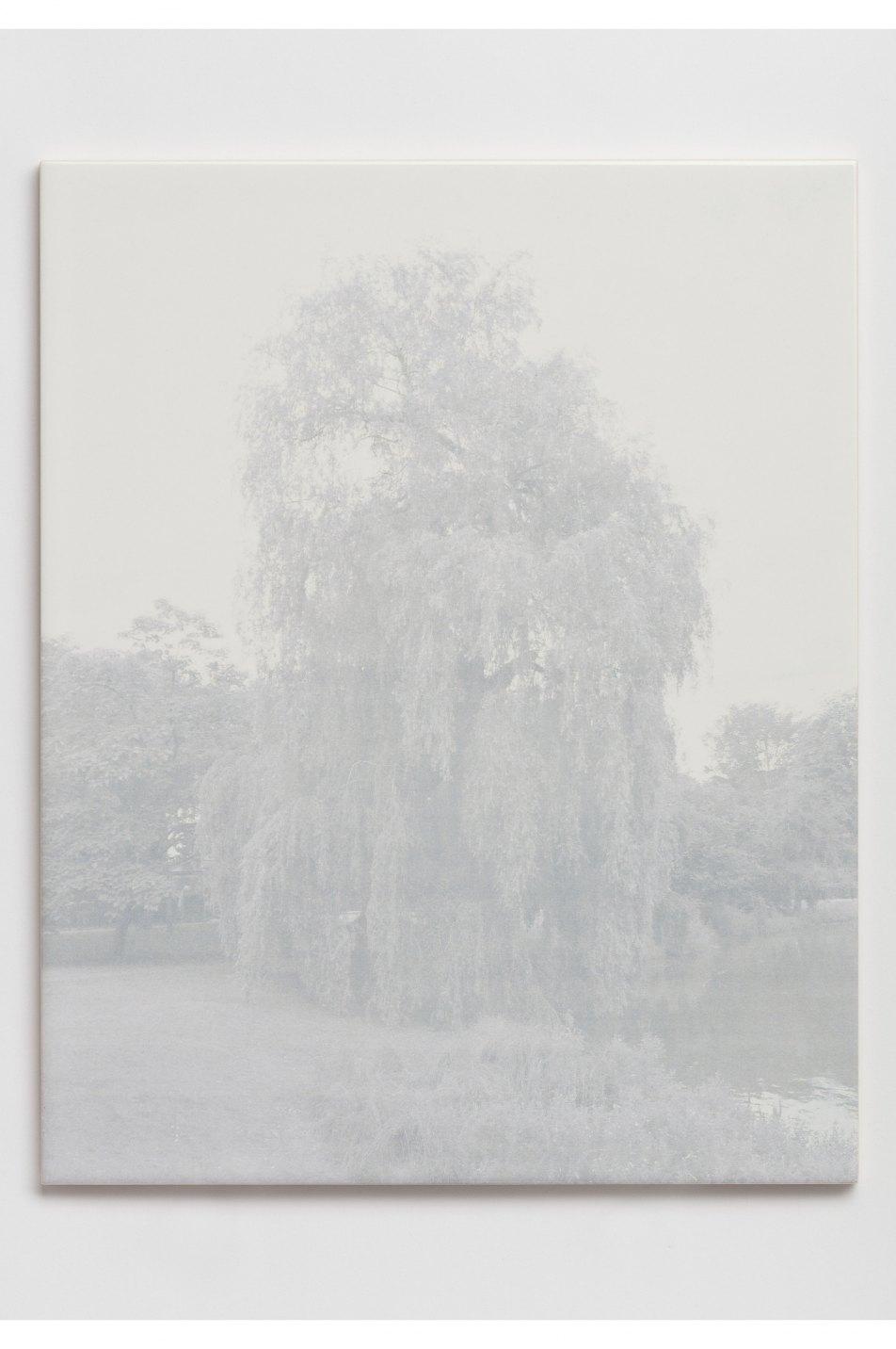 Prem Sahib,<em>Parc de Woluwe, Brussels</em>,2017, digital print on ceramic tile, 25 × 20 cm - Mendes Wood DM
