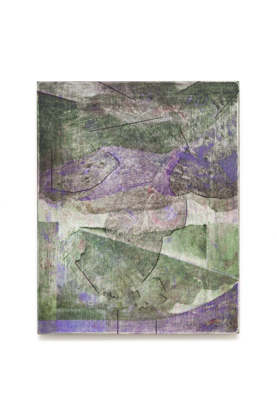 Iulia Nistor, <em>Evidence L4 F5 A1</em>, 2017, oil on wood, 50 × 40 cm - Mendes Wood DM