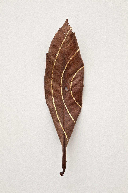 Daniel Steegmann Mangrané,<em>Masks</em>,2012, caboatã-de-Leite tree leaves and gold leaf, 24 × 6 cm - Mendes Wood DM