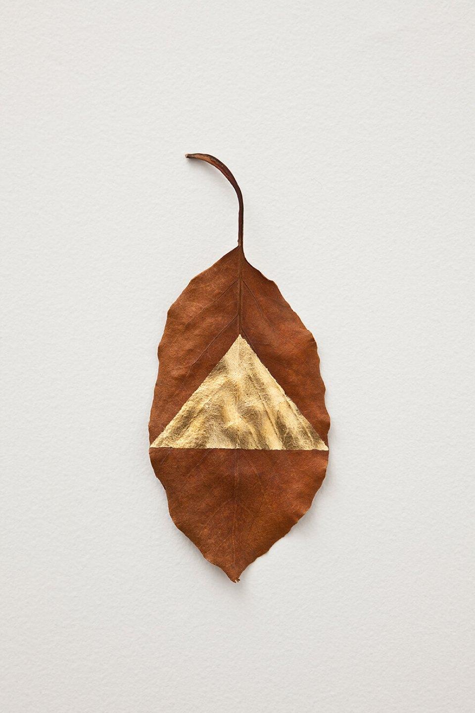 Daniel Steegmann Mangrané, <em>Masks</em>,2012,Avocato tree leaves and gold leaf, 19 × 8 cm - Mendes Wood DM