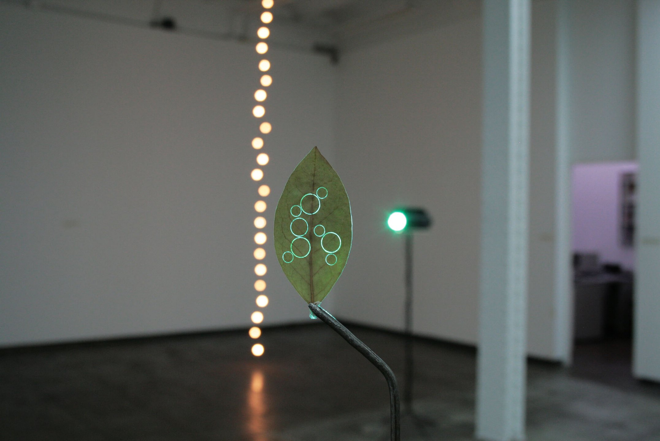 Daniel Steegmann Mangrané,<em>Elegancia y Renuncia</em>, 2011, mixed media, variable dimensions - Mendes Wood DM