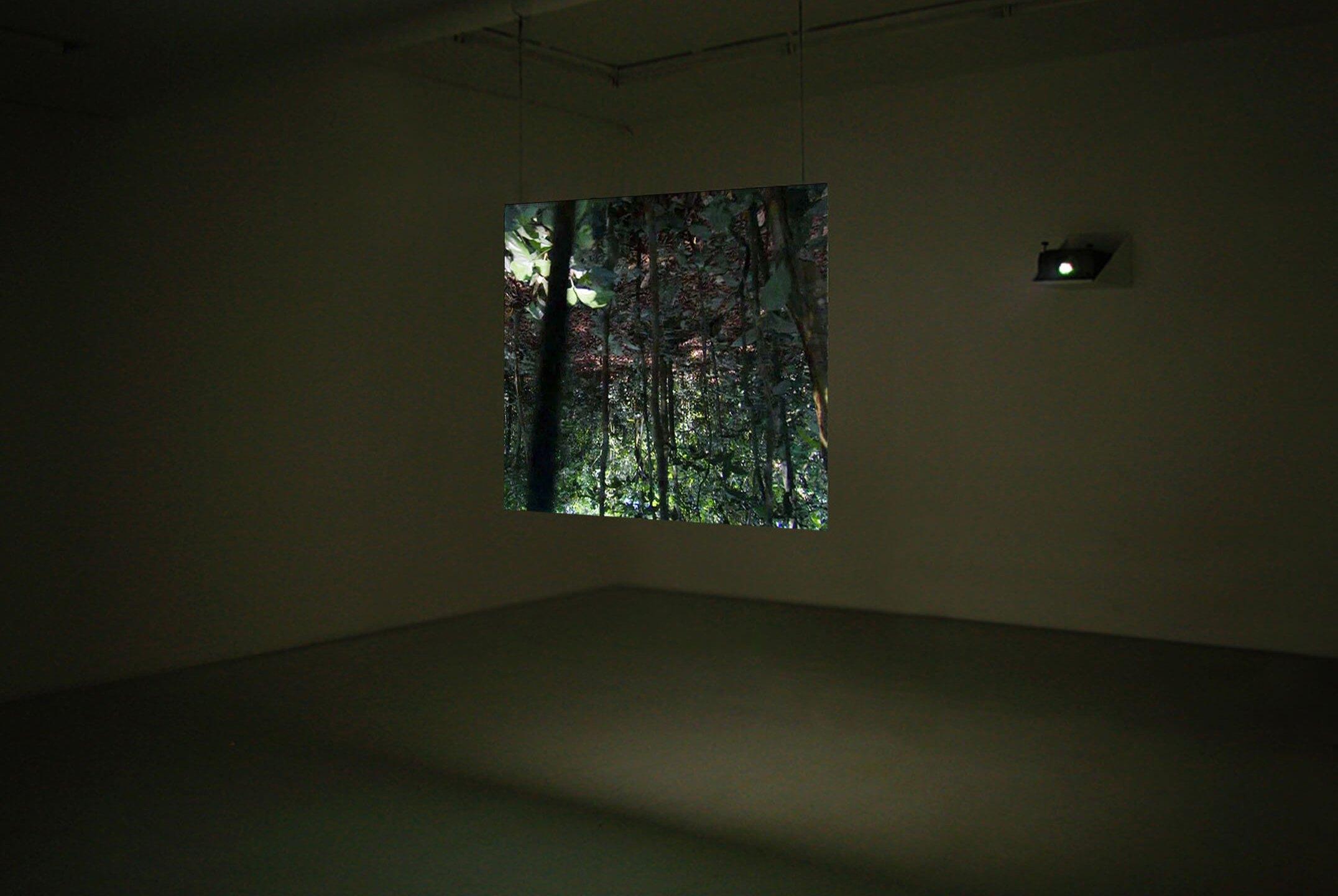 Daniel Steegmann Mangrané, <em>Teque-teque</em>, 2010, monochannel video, color, sound 0'38
