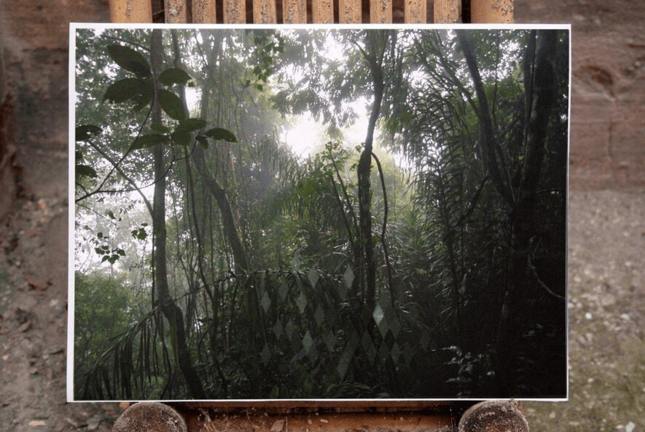 Daniel Steegmann Mangrané,<em>&nbsp;Invisible structures,</em> 2008, oil on photograph,&nbsp;30 × 40 cm<br> - Mendes Wood DM