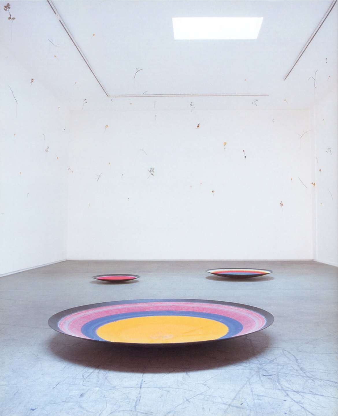 Daniel Steegmann Mangrané,<em>Mientras una flor se marchita</em>, 1998, evaporated watercolor on galvanized iron plates, a few hundred branches and dried leaves, silk plates have 150, 90 and 60 cm in diameter, the instalation has variable dimensions - Mendes Wood DM