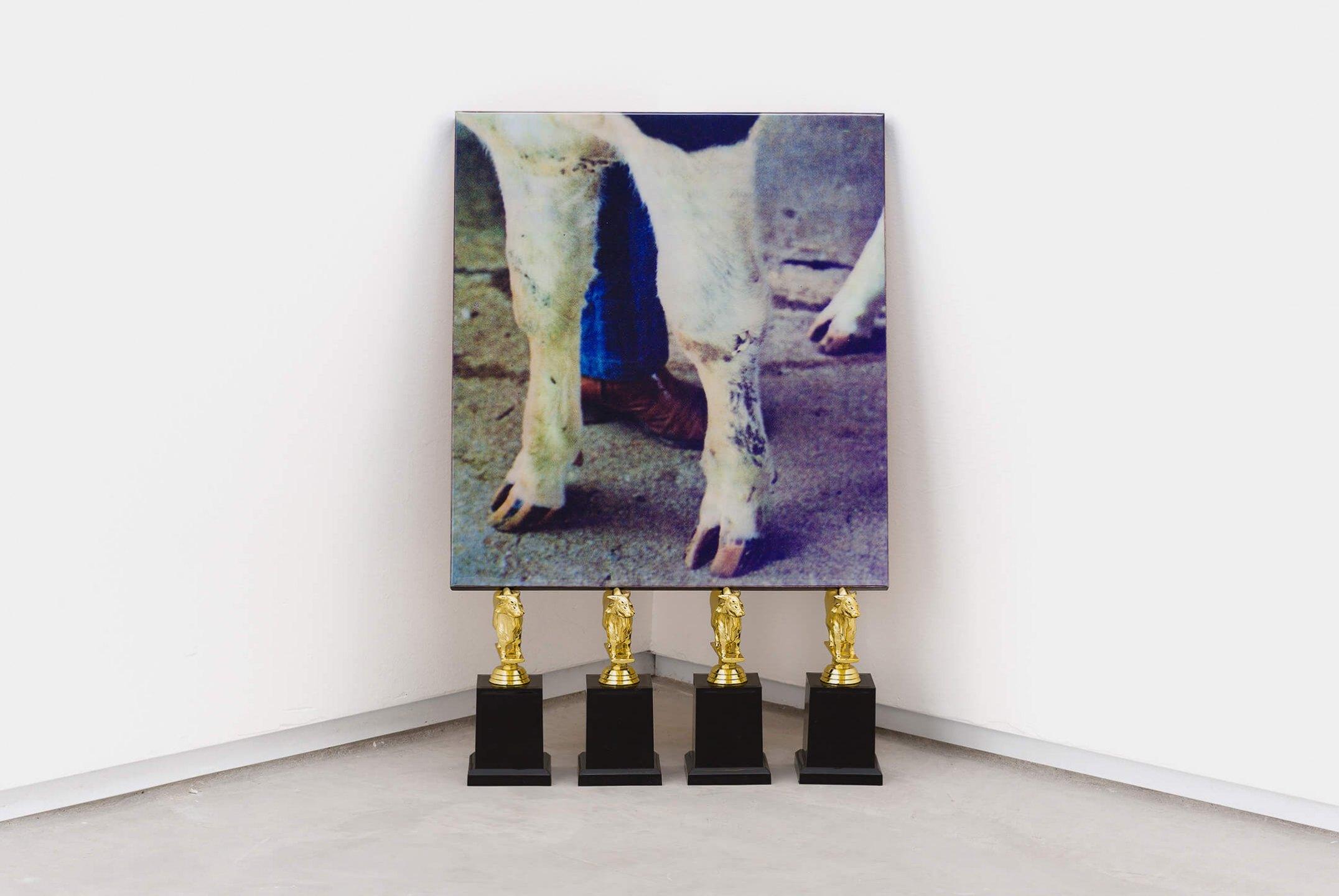 Deyson Gilbert,<em>Intercurso (Quadrúpede)</em>, 2006/2013, photography, wood, lacquer, polyester and plastic trophies, 59,5 × 39 × 13 cm - Mendes Wood DM