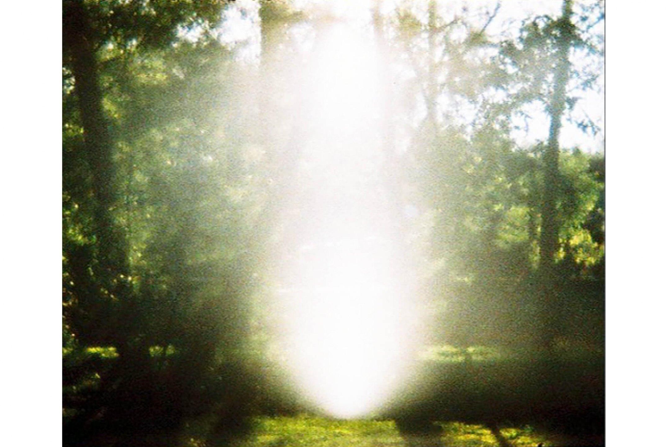 Leticia Ramos,&nbsp;<em>Jardim Fantástico</em>, 2008, 35 mm / vídeo, 3' looping - Mendes Wood DM