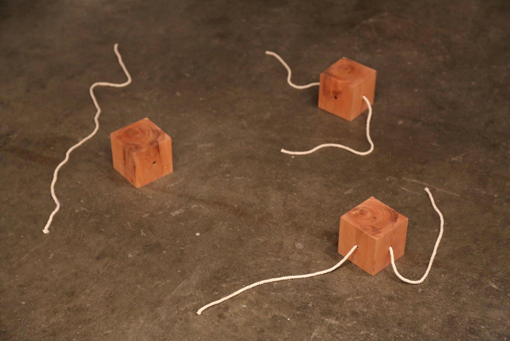 Roberto Winter, <em>Every which way,</em>2013, cubos de madeira, cordas de algodão, dimensões variáveis (10 x 10 x 10 cm cada cubo) - Mendes Wood DM