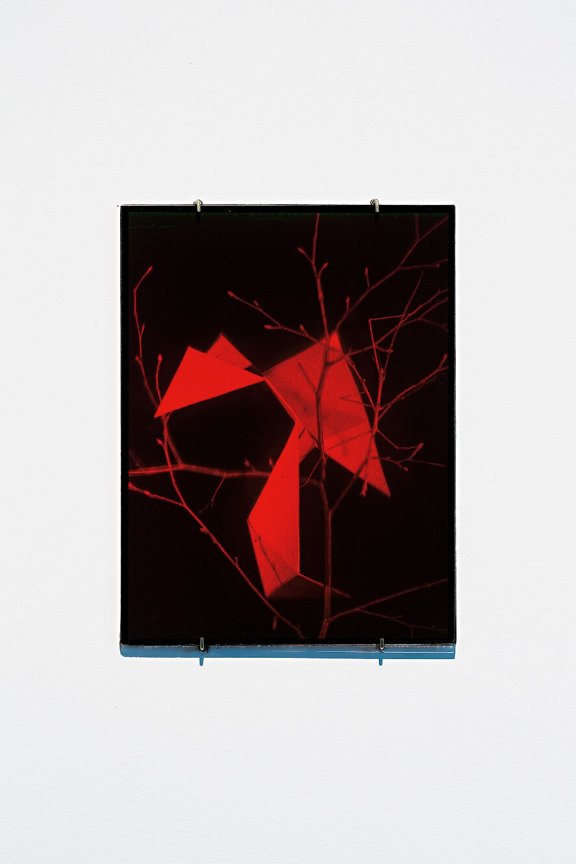 Daniel Steegmann Mangrané, <em>Holograma 1 (estrutura e galho)</em>, 2013, ultimate holography plates,25 × 20 cm - Mendes Wood DM