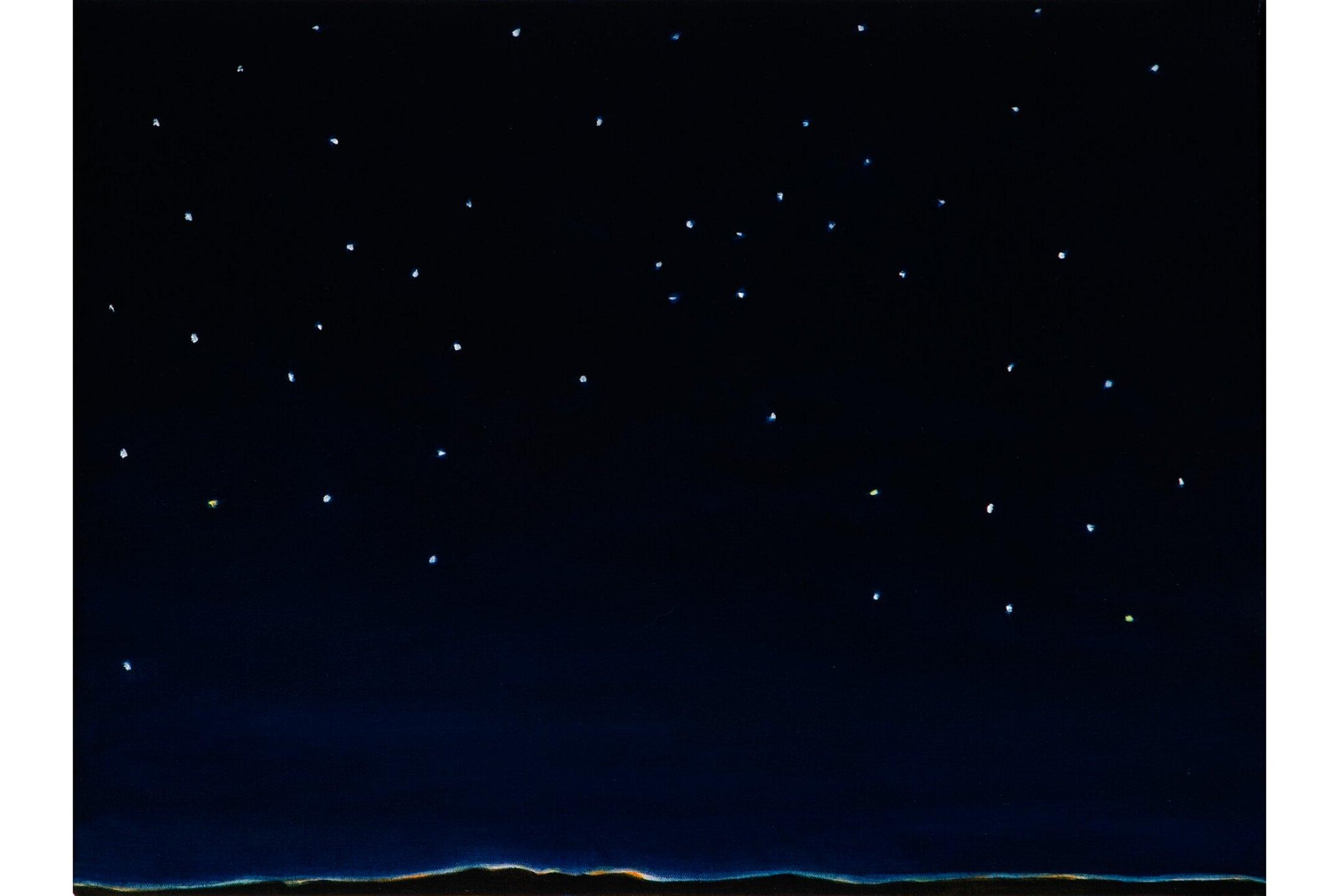 Patricia Leite, <em>Céu muito estrelado, 2009, oil on canvas, 30×40 cm</em><br><br> - Mendes Wood DM