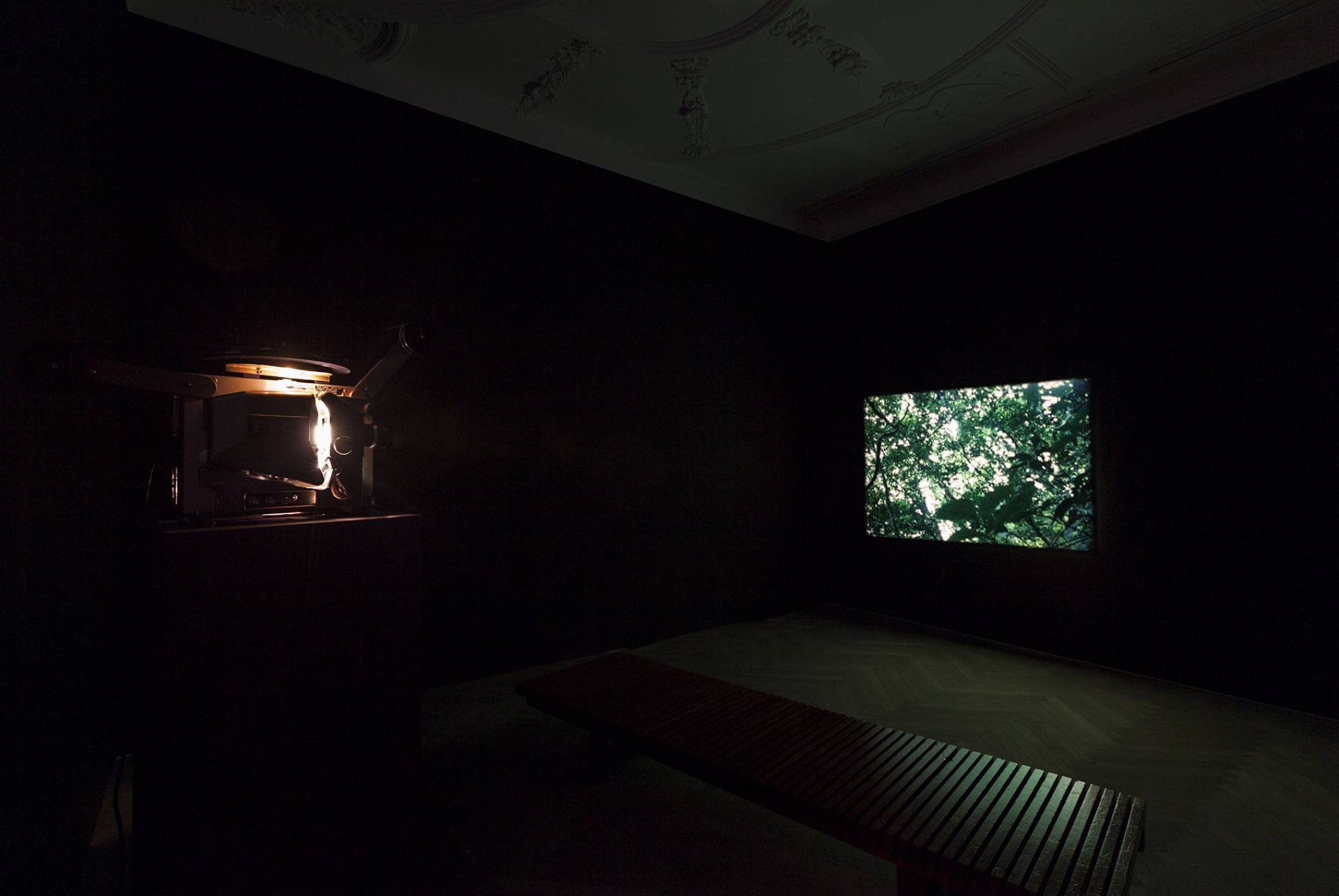Daniel Steegmann Mangrané,<em>Spiral Forest (kingdom of all the animals and all the beast is my name),</em>2015,Esther Schipper, Berlin - Mendes Wood DM