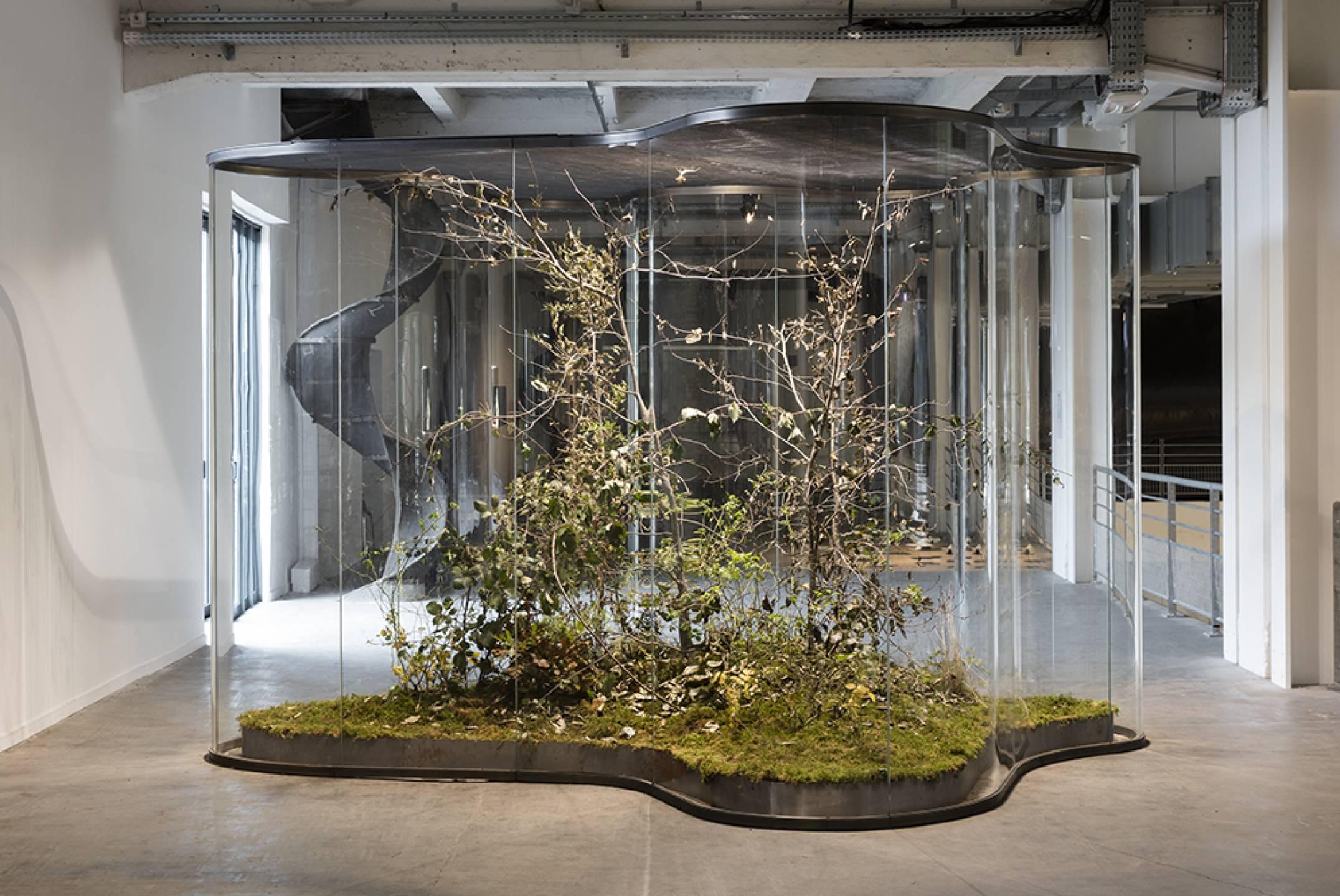 Daniel Steegmann Mangrané,&nbsp;<em>14e Biennale de Lyon</em>,&nbsp;Lyon, 2017 - Mendes Wood DM