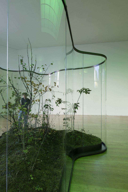 Daniel Steegmann Mangrané,<em>A Transparent Leaf, Instead of the Mouth</em>,Museu de Arte Contemporânea de Serralves,Porto, 2017 - Mendes Wood DM