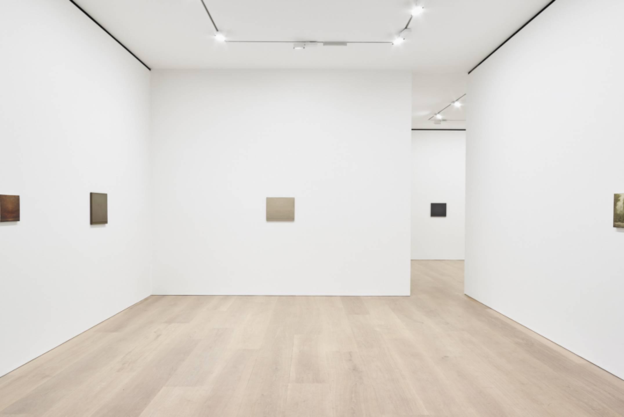 Lucas Arruda,&nbsp;<em>Deserto-Modelo,</em>&nbsp;David Zwirner, London, 2017 - Mendes Wood DM