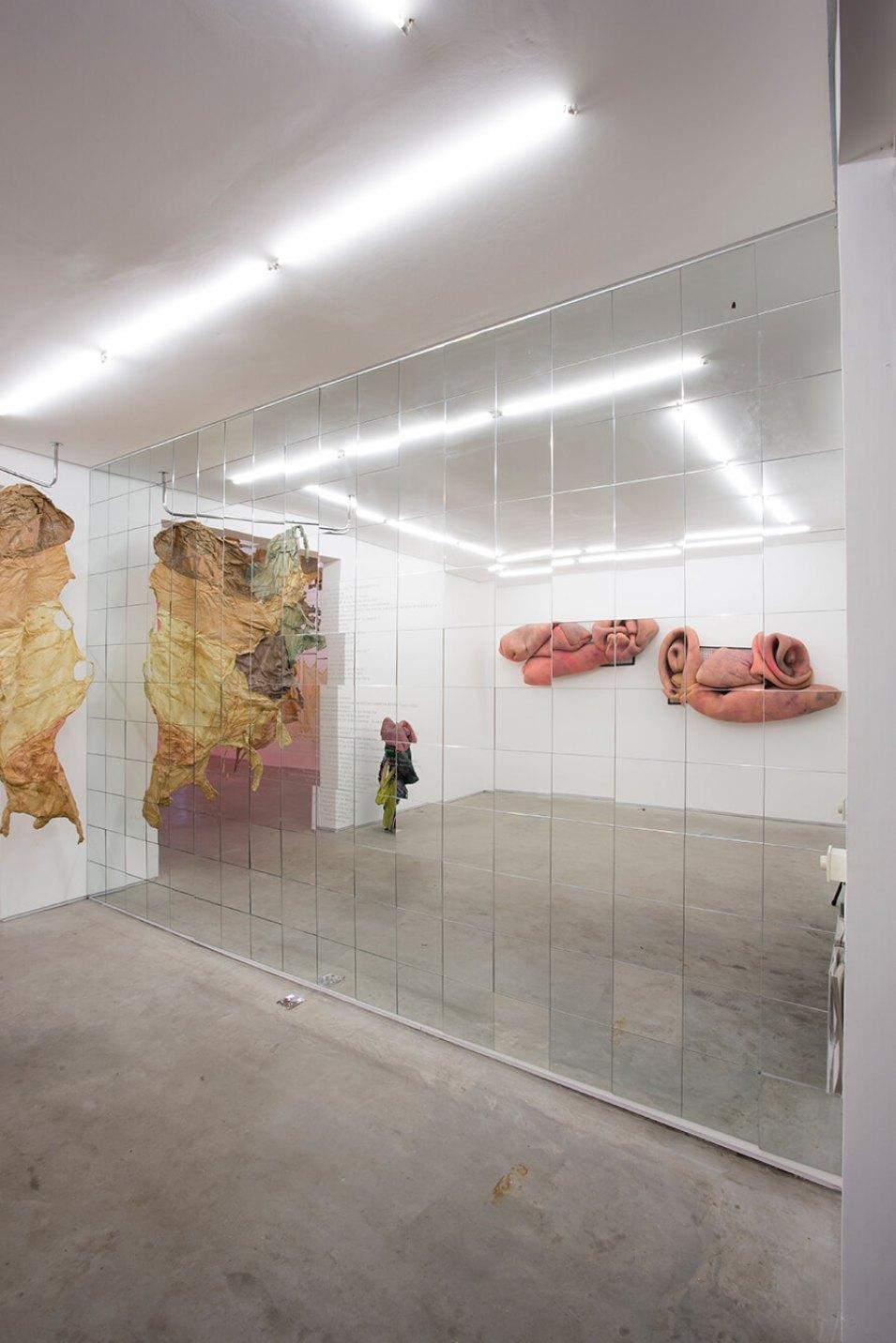 Cibelle Cavalli Bastos,<em>Desbinarizante</em>, 2016, etched mirror, 470 × 320 cm - Mendes Wood DM