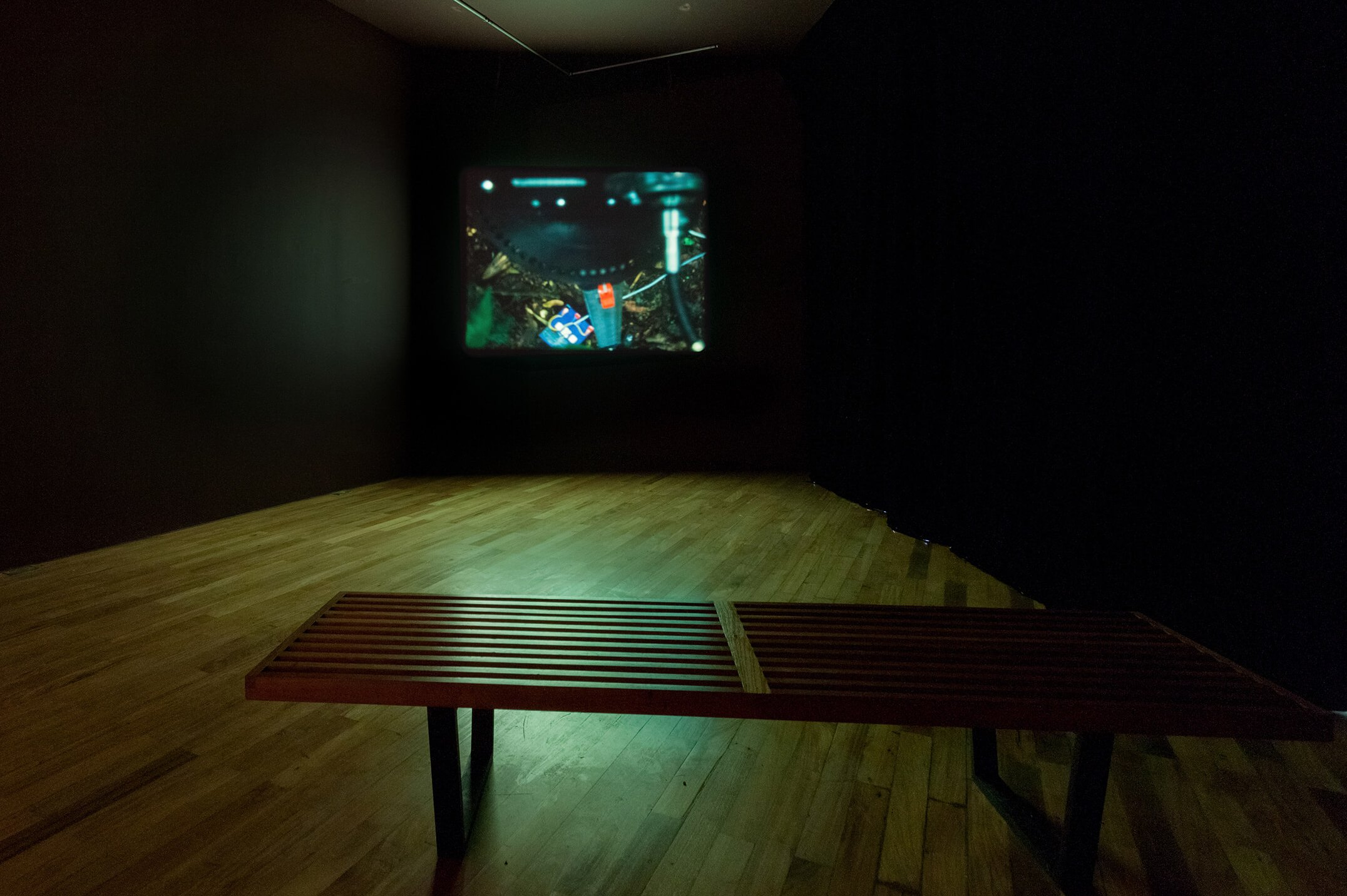 Daniel Steegmann Mangané,<em>Spiral Forest (kingdom of all the animals and all the beasts is my name)</em>, 2014,16mm,11' - Mendes Wood DM