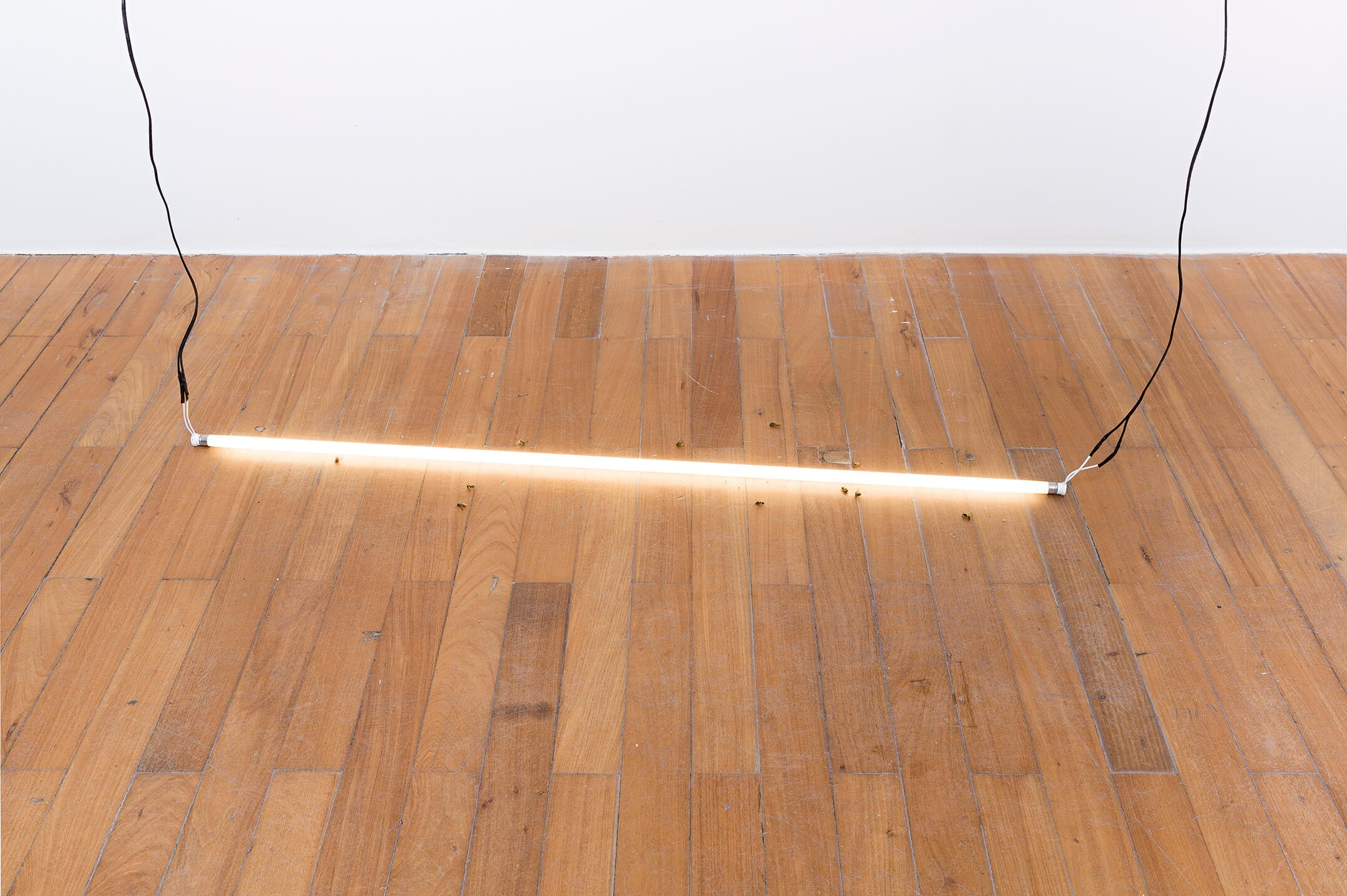 Adriano Amaral, <em>untitled</em>, 2015, lamp displacement, electric wires and wasps, variable dimension - Mendes Wood DM
