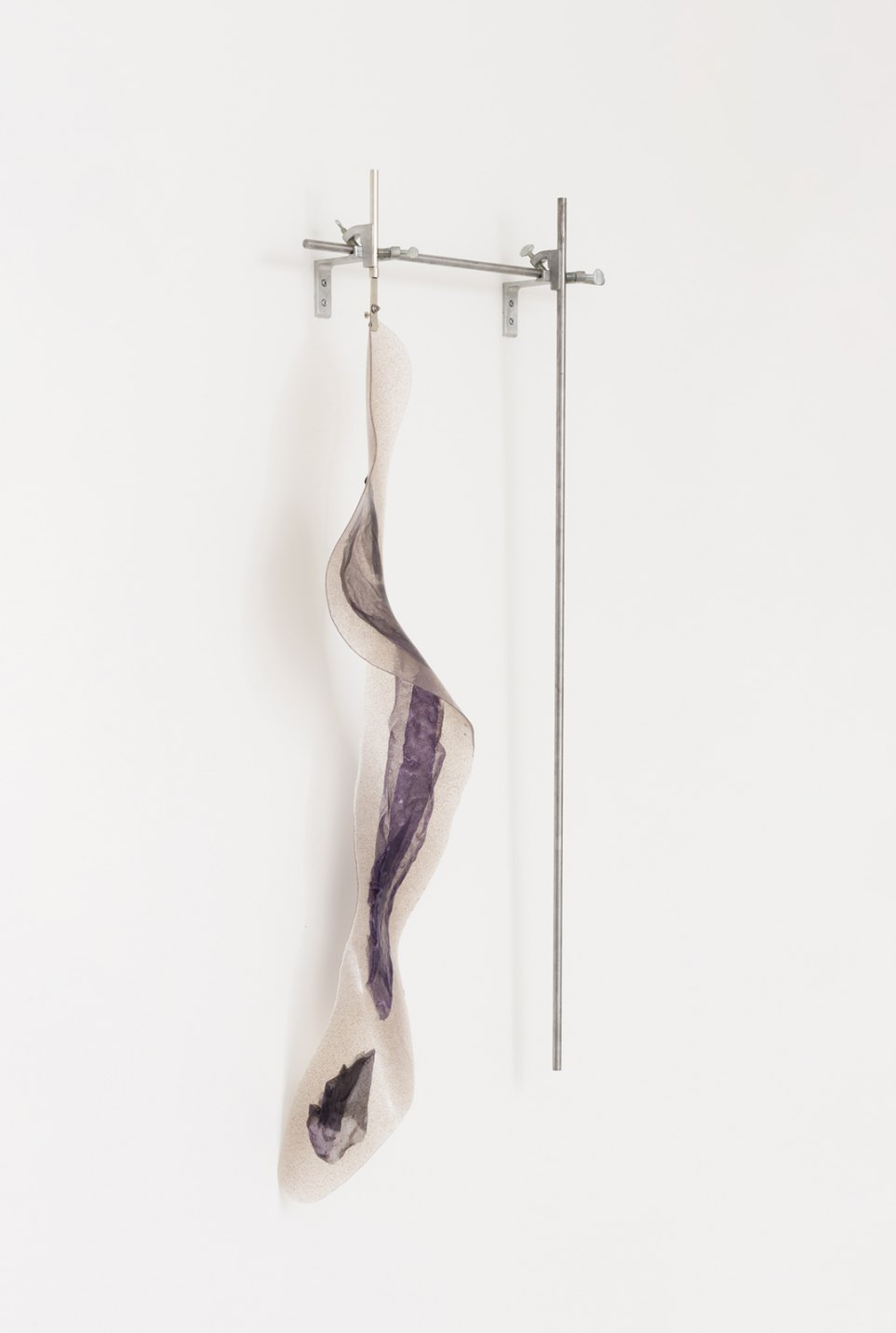 Felipe Meres, <em>Tentata Adventitium</em>, 2017, electron micrograph, pigment print on silk, açaí berry, silicone rubber, polished steel, laboratory hardware, 122 × 65 cm - Mendes Wood DM