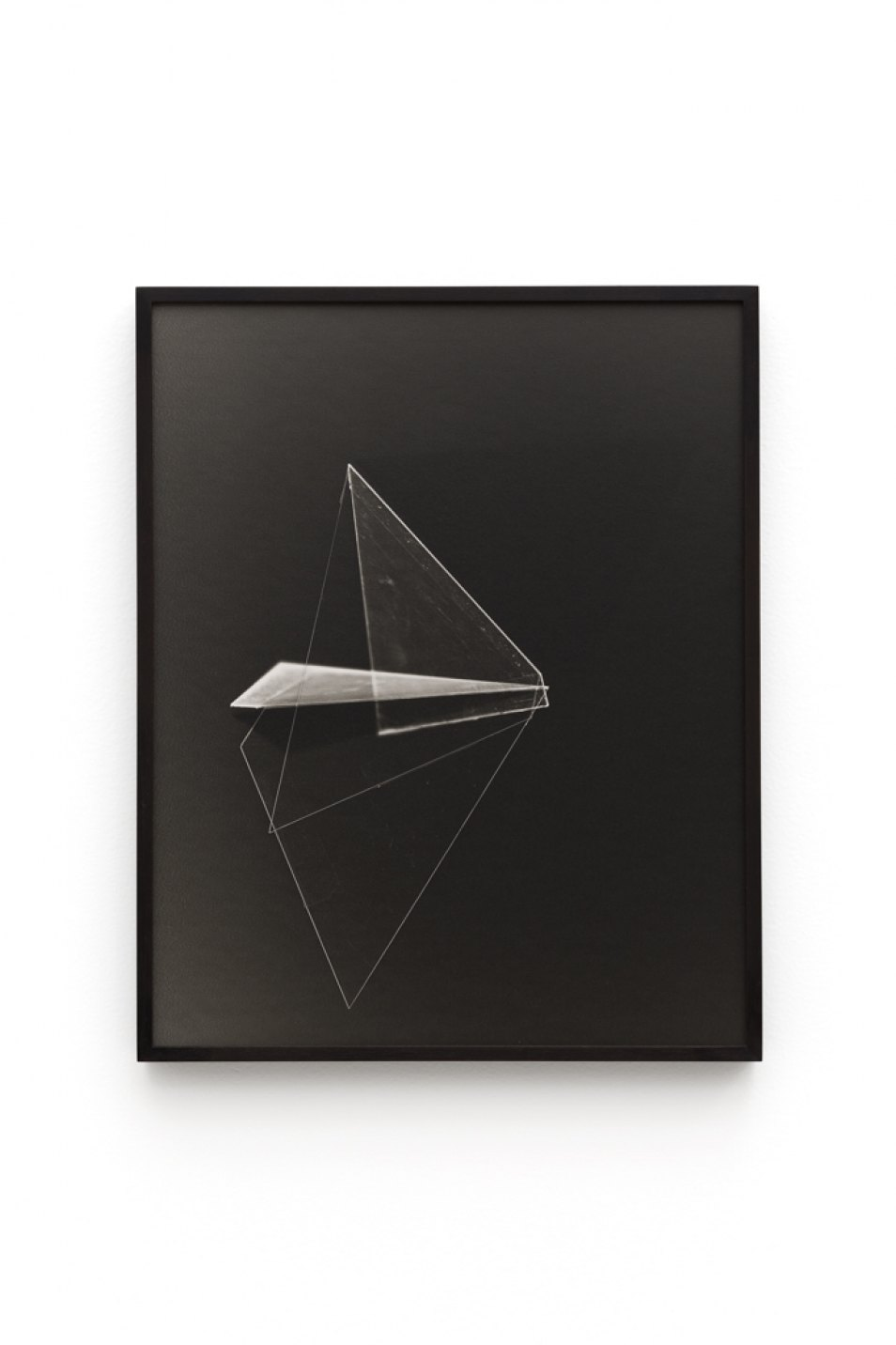 Leticia Ramos,&nbsp;<em>BICHOS</em>,&nbsp;2017,&nbsp;silver print and photogram,&nbsp;40 × 50 cm - Mendes Wood DM