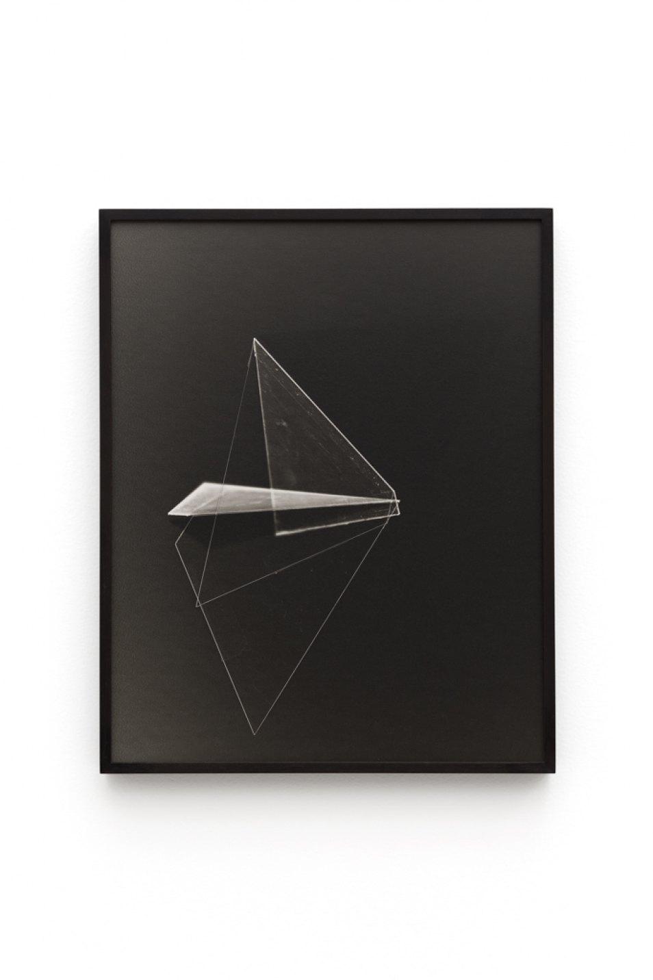Leticia Ramos,&nbsp;<em>BICHOS</em>,&nbsp;2017,&nbsp;silver print and photogram,&nbsp;40 × 50 cm - Mendes Wood DM